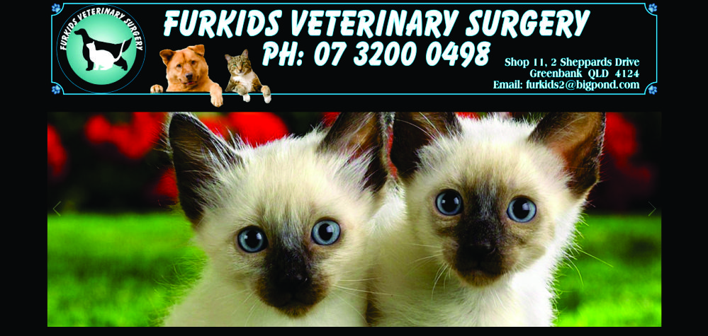 Furkids Veterinary Surgery