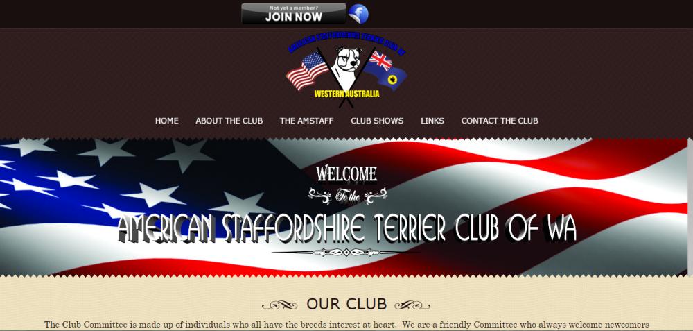 American Staffordshire Terrier Club of WA
