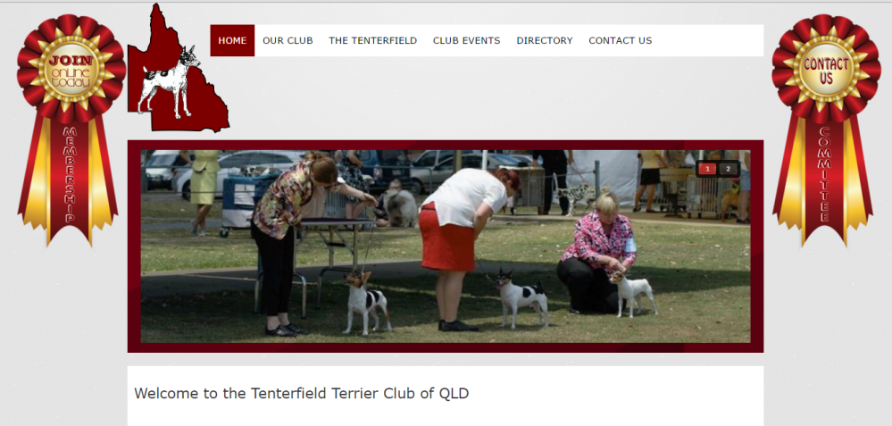 Tenterfield Terrier Club of QLD